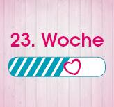 23. Schwangerschaftswoche