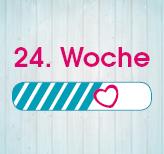 24. Schwangerschaftswoche