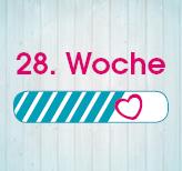 28. Schwangerschaftswoche