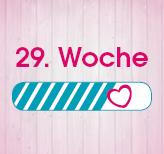 29. Schwangerschaftswoche