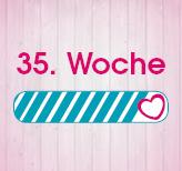 35. Schwangerschaftswoche
