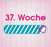 37. Schwangerschaftswoche