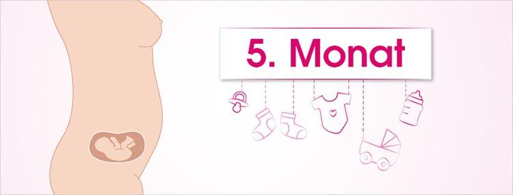 Grafik 5. Schwangerschaftsmonat