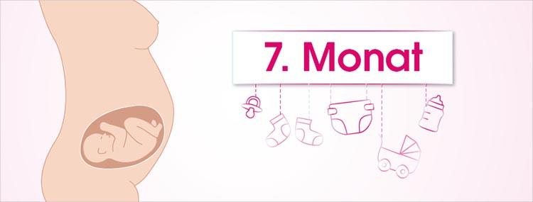 Grafik 7. Schwangerschaftsmonat