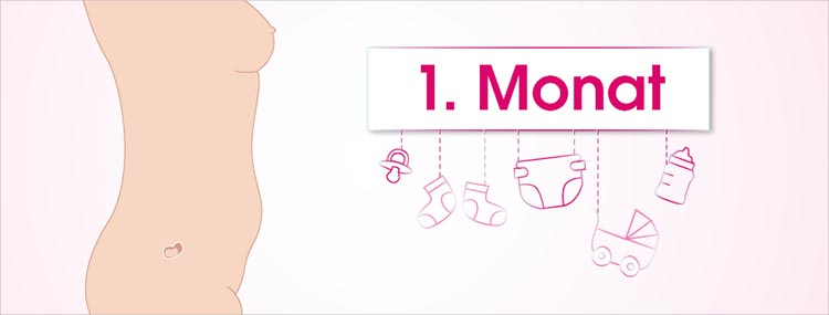 Grafik 1. Schwangerschaftsmonat