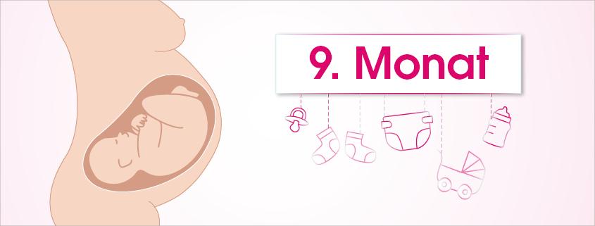 Grafik Schwangerschaft 9. Monat