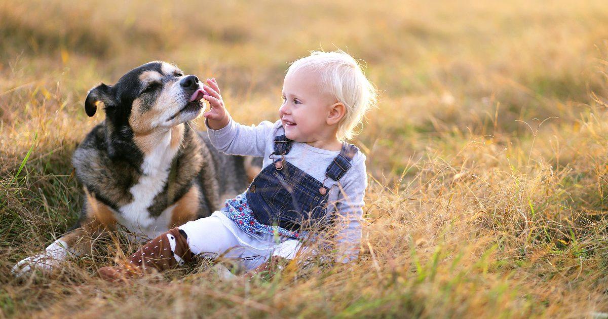 Kind streichelt Hund