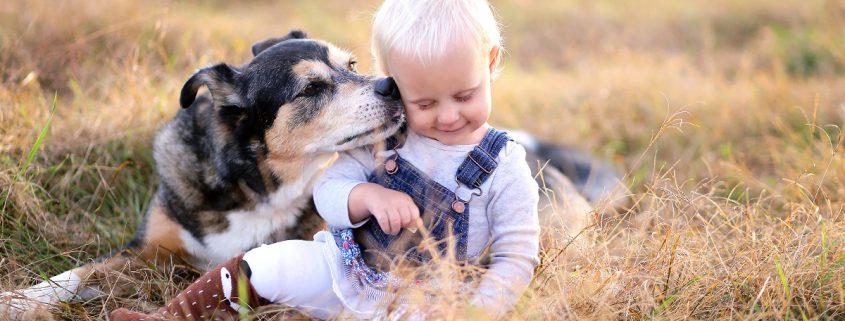 Hund küsst Kind