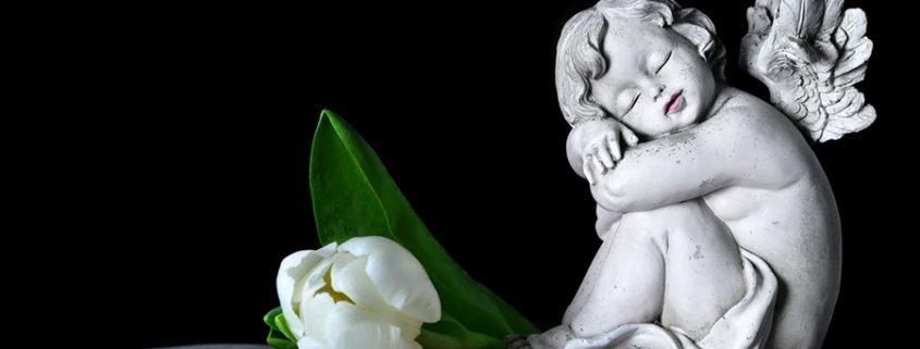 Engel auf Buch mit Blume