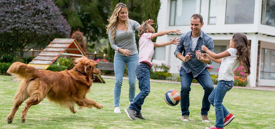 Familie mit Hund spielt Ball im Garten