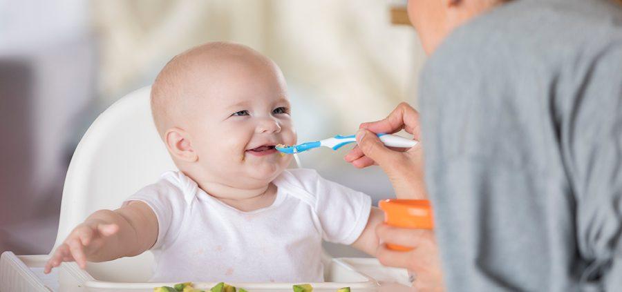 Ratgeber-Bild-3-Füttern