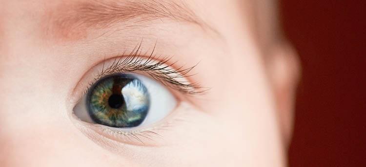 Baby Auge